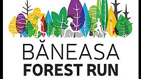 Baneasa Forest Run - 04 Noiembrie 2018